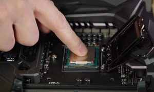 install the processor in the socket